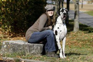 Dogge Züchter Beratung