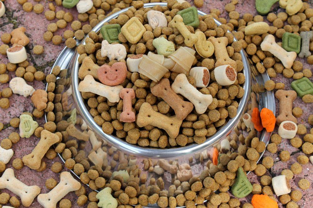 Gutes Hundefutter Trockenfutter für Dogge