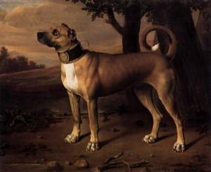 Dogge als Kammerhund