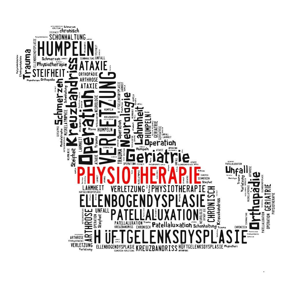 Was sind typische Dogge Krankheiten?