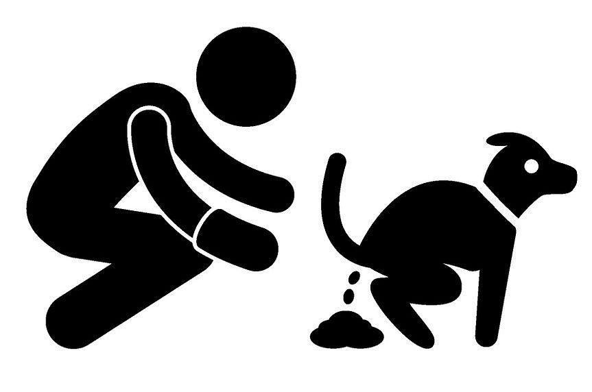 Beim Gassi gehen gehört das Kot wegräumen dazu!