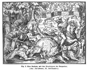 Wildschweinjagd mit Doggen - 16. Jahrhundert