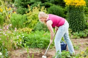 Meine Dogge im eigenen Garten vergraben. Worauf muss ich achten?