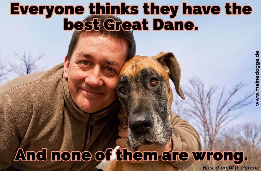 Ein Mann umarmt seine Dogge