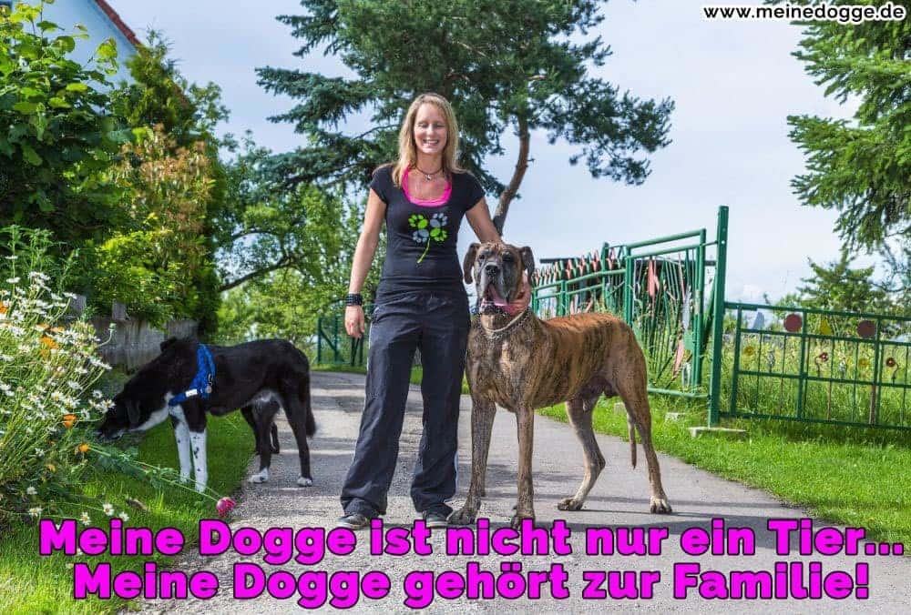 Eine Frau mit ihre Doggen