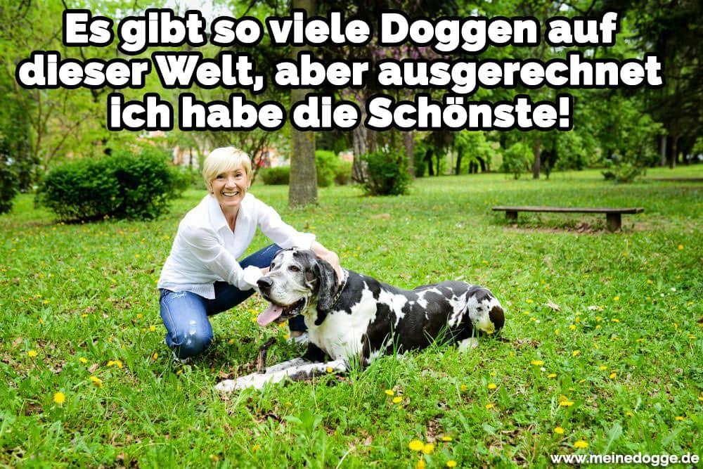 Eine Frau streichelt eine Dogge