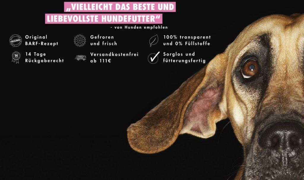 Die Dogge BARFen - Einfach und mit ganz viel Liebe!